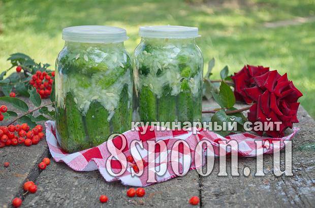 Огурцы в собственном соку на зиму фото_9