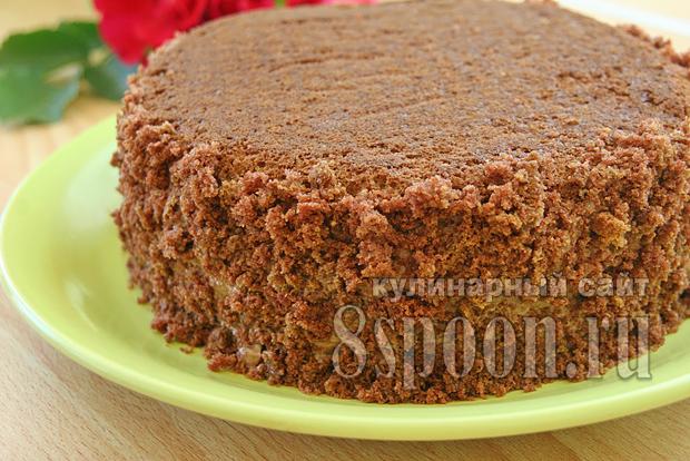 Торт пражский рецепт с фото пошагово _04