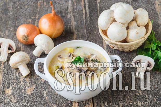 Суп из плавленых сырков рецепт с фото_02