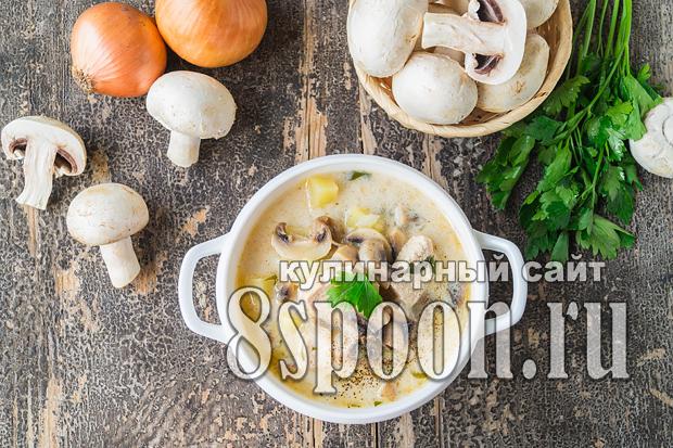 Суп из плавленых сырков рецепт с фото_07