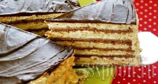 торт Микадо фото 21